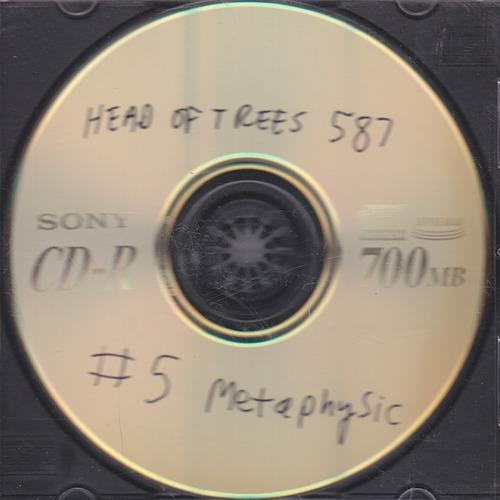 Head of Trees - #5 Metaphysic - 2000.jpeg