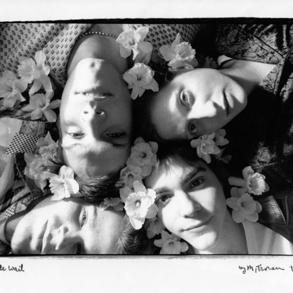 Wide Wail (Flowers).jpg