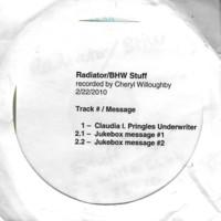 Cheryl Willoughby - Radiator, BHW Stuff - 2000.jpg
